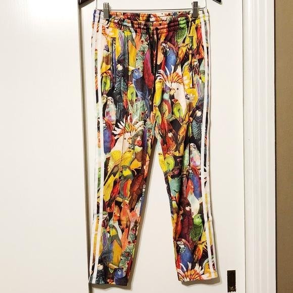 adidas pantaloni rari passaredo colorato uccello corridori poshmark